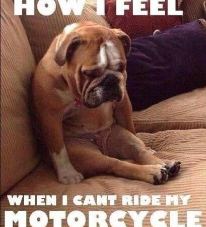 How I feel when I can't ride my motorcycle