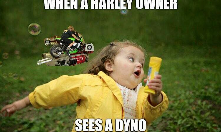 When a Harley owner sees a dyno